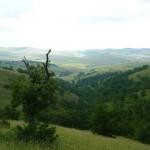 Parkovi prirode u Srbiji