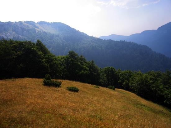 Nacionalni park Biogradska gora