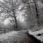 Zimovanje – skijanje, sanjkanje i grudanje
