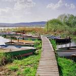 Balaton, najveće jezero u središnjoj Europi