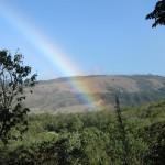 Monteverde, jedno od 7 svjetskih čuda Kostarike