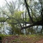 Nacionalni parkovi u Europi