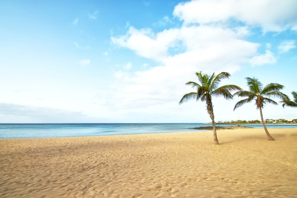 plaža na kanarima