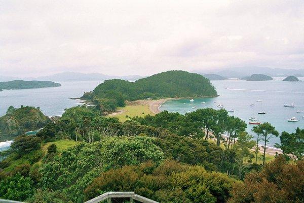 zaljev otoka na novom zelandu