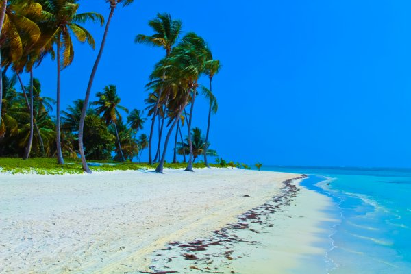 plaža na punta cani
