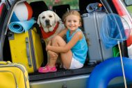 dijete i pas u autu