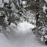 Zimovanje u Slovačkoj